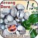 Download Resep Kerang Dara Spesial APK